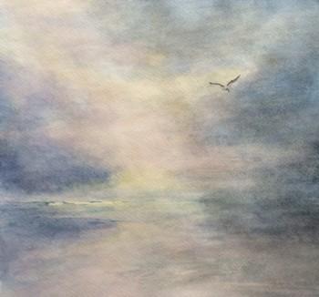 2016 0923 Seagull